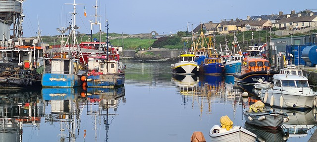 Wicklow Town is a great base to explore the Wicklow Mountains National Park